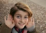 panini-orecchie